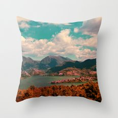 Beautiful Days Throw Pillow