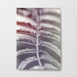 photo leafs 2 #photography #botanical Metal Print