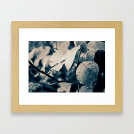 Autumn Blues Framed Art Print
