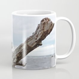 Natural Driftwood Coffee Mug