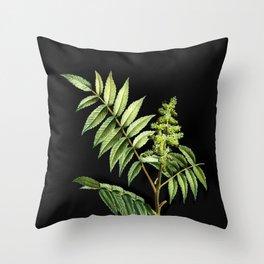 Vintage Staghorn Sumac Botanical Illustration on Black (Portrait) Throw Pillow