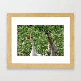 Three Little Peckerheads Framed Art Print