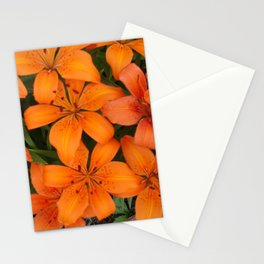 Tiger Lillies 2 Stationery Cards