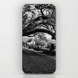 Treeful Cementery iPhone Skin
