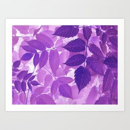 Ultra Violet Purple Leaves Art Print