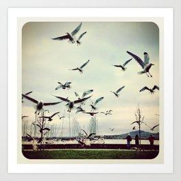 Birds - Instagram Art Print