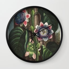 The Quadrangular Passion Flower from The Temple of Flora (1807) by Robert John Thornton Wall Clock