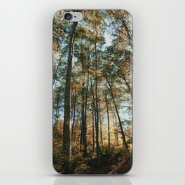 into the woods 08 iPhone Skin