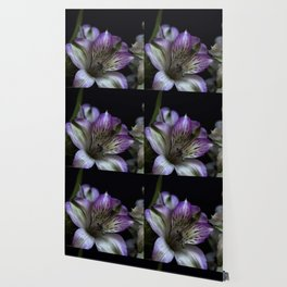 Floral bouquet. Purple and white flowers. Wallpaper