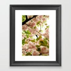 May Flowers Framed Art Print
