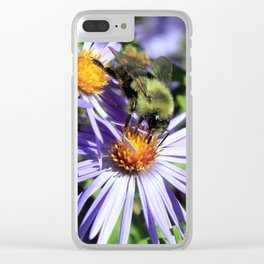Pollen Dusted Bee on Asters Clear iPhone Case