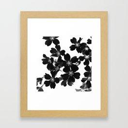 Primrose In BW Framed Art Print