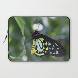 Cairns Birdwing Butterfly Laptop Sleeve