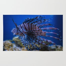 Pterois Miles (The Devil Fish) Rug