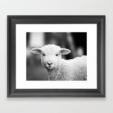 Lamb in Black and White Framed Art Print