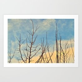 Beneath The Sun Art Print