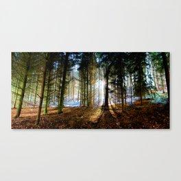Winter Sunlight. Canvas Print