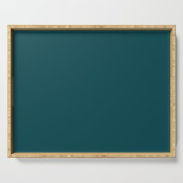 Best Seller Dark Turquoise Solid Color Pairs to Benjamin Moore Tucson Teal 2056-10 - Accent Shade Serving Tray