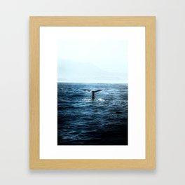 Ocean Teal Whale Framed Art Print