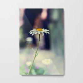Daisy I Metal Print