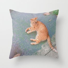 Cat Lounging Throw Pillow