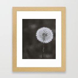 Wishes -Unplucked Framed Art Print