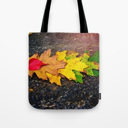 Fall Collection 2016 Tote Bag