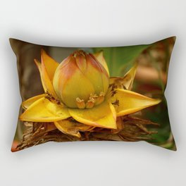 Musella Lasiocarpa - A Drawf Banana Rectangular Pillow