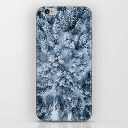 Winter Pine Forest iPhone Skin