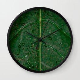 Botanical leaf with rain drops | Tropical travel photography | Nature art print Wall Clock