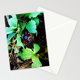 Ghost Found Stationery Cards