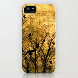 The Raven's Song iPhone Case