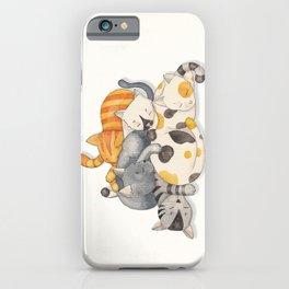 Cat Nap (Siesta Time) iPhone Case