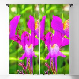 The Inner World of Milkweed Flowers Blackout Curtain