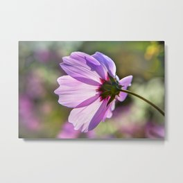 Backlit Flora Metal Print