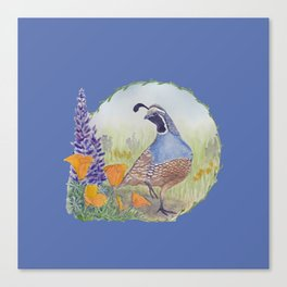 California Quail with Poppies and Lupine on Blue Canvas Print