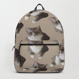 beige tan grey american wirehair cat pattern Backpack