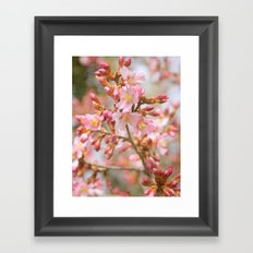 Blossom in the Spring time and fall in love Framed Art Print