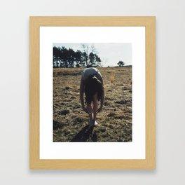 Mystics V Framed Art Print