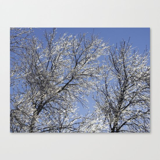Sparkling Iced Branches Canvas Print