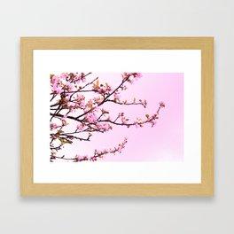 Spring Dreaming Framed Art Print