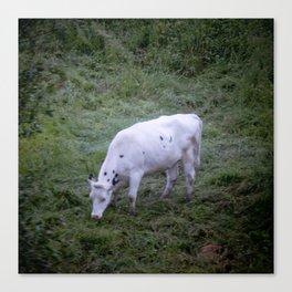 La Vache Canvas Print