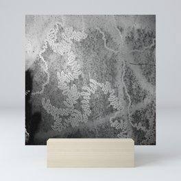 Beautiful snail trails on bark in black and white Mini Art Print