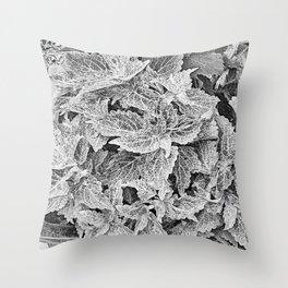 coleus black and white Throw Pillow