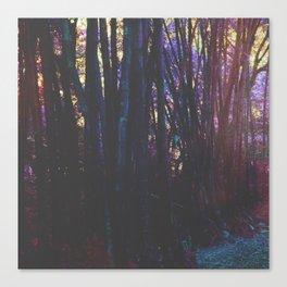 Twilight in Wonderland Canvas Print