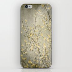 Spring rain iPhone & iPod Skin
