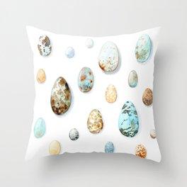 Eggs collection Throw Pillow