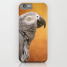 African grey parrot iPhone 6s Slim Case