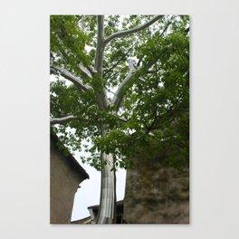 Metal Tree Canvas Print