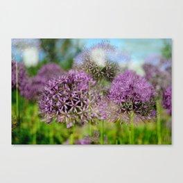 Summer Blur Canvas Print